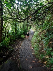 the start of the volcano walk
