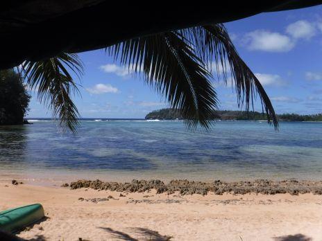 Haniteli's view