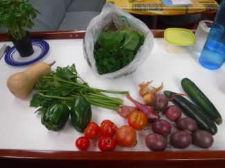 A wonderful resident shared her veggie garden with us