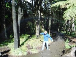 exploring local walks